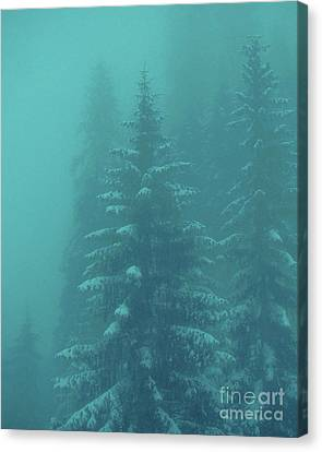 Ghostly Trees In Oils Canvas Print by Al Bourassa