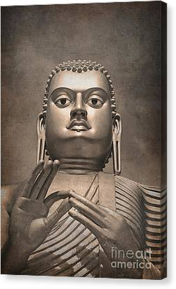 Giant Gold Buddha Vintage Canvas Print by Jane Rix