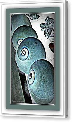 Gifts Of Saphires  Canvas Print by Danielle  Parent
