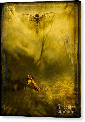 Giraffe And The Heart Of Darkness Canvas Print by Paul Grand