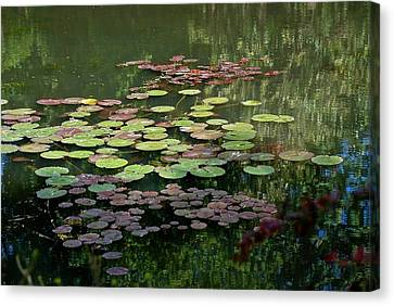 Giverny Lily Pads Canvas Print by Eric Tressler