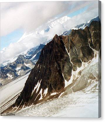 Glacier Flight 2 Canvas Print