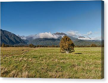 Aotearoa Canvas Print - Glacier View by Andreas Hartmann