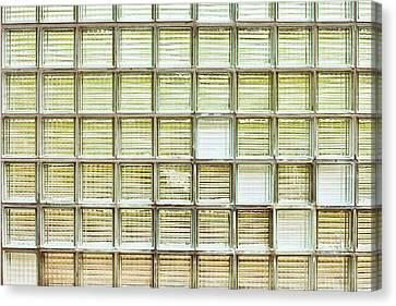 Glass Brick Wall Canvas Print by Tom Gowanlock