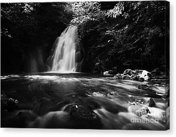 Gleno Or Glenoe Waterfall County Antrim Canvas Print by Joe Fox