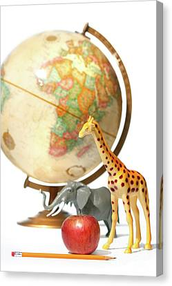 Toy Animals Canvas Print - Globe With Toys Animals On White by Sandra Cunningham
