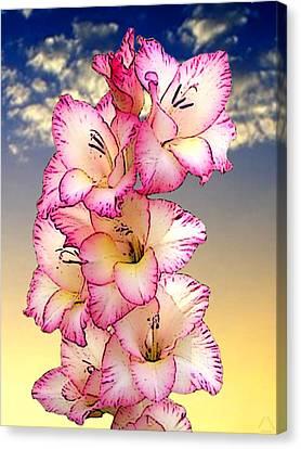 Glorious Gladiola Canvas Print