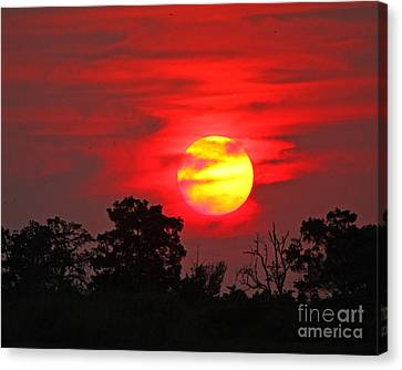 Canvas Print featuring the photograph Glory Ablazed by Luana K Perez