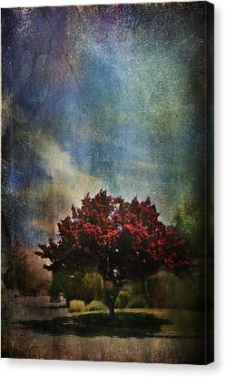 Glory Canvas Print by Laurie Search