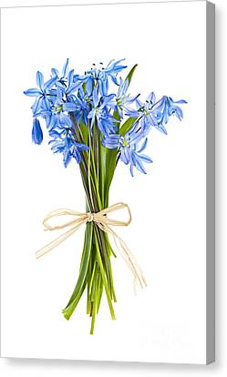 Blue Wildflower Bouquet Canvas Print by Elena Elisseeva