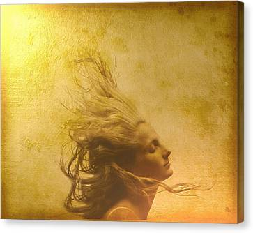 Glowing In The Wind Canvas Print by Gun Legler