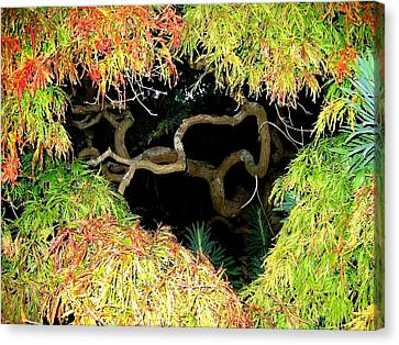 Gnarly Autumn Beauty Canvas Print by Will Borden
