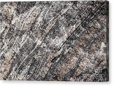 Canvas Print featuring the photograph Gneiss Rock Pattern by Les Palenik