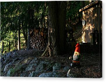Gnome And The Woodpile Canvas Print by Lorraine Devon Wilke