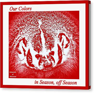 Go Go Badgers Canvas Print