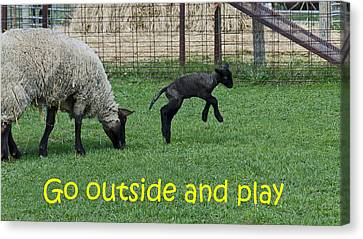 Go Outside And Play Canvas Print by LeeAnn McLaneGoetz McLaneGoetzStudioLLCcom