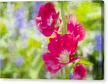 Go Paint In The Garden Canvas Print by Toni Hopper