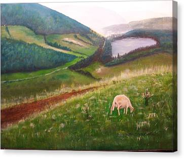Goat On Welsh Mountain Canvas Print by Malcolm Clark