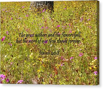 Gods Word Stands Forever Canvas Print by Sheri McLeroy