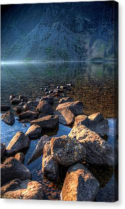 Going For A Swim Canvas Print by Svetlana Sewell