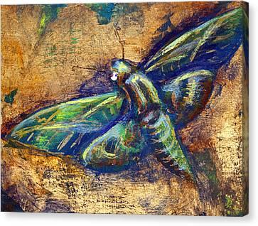 Gold Moth Canvas Print