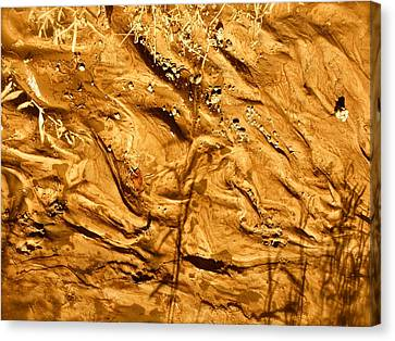 Canvas Print featuring the photograph Gold River by Brian Sereda