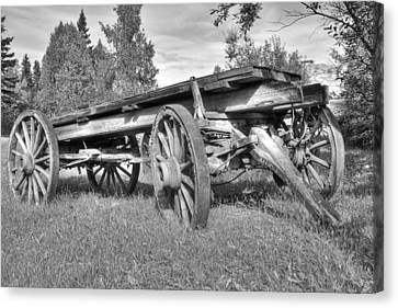 Gold Rush Wagon Canvas Print by Thomas Payer