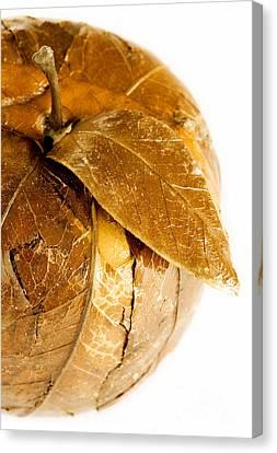 Golden Apple Canvas Print by Igor Kislev
