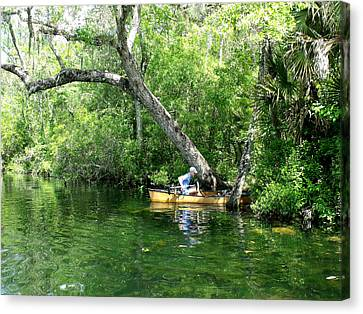 Golden Canoe Launch Canvas Print by Marilyn Holkham