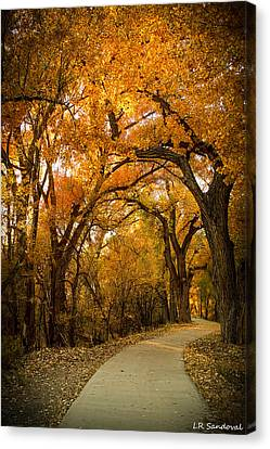 Golden Canopy Canvas Print by Lena Sandoval-Stockley