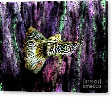 Golden Fish Canvas Print by Mario Perez