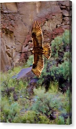 Canvas Print featuring the photograph Golden Flight  by Britt Runyon