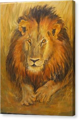 Golden Lion Canvas Print