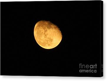 Canvas Print featuring the photograph Golden Moon by Tyra  OBryant
