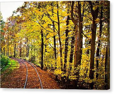 Golden Rails Canvas Print by Sara Frank