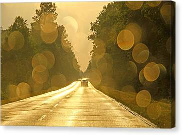 Golden Road Canvas Print by Daniela Duncan