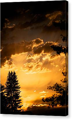 Golden Sky Canvas Print by Kevin Bone