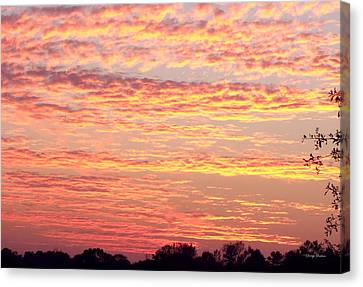 Golden Sunset 002 Canvas Print by George Bostian