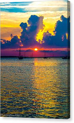 Golden Waters Canvas Print by Shannon Harrington