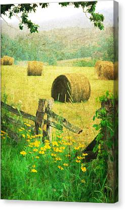 Good Day For Dreams Canvas Print by Darren Fisher