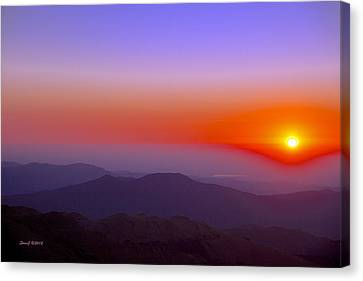 Good Morning Everyone Canvas Print