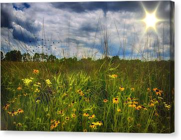 Good Morning Sunshine Canvas Print by Bill Tiepelman