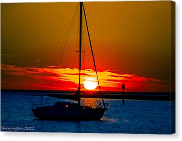 Canvas Print featuring the photograph Good Night by Shannon Harrington
