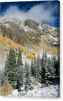 Gore Range Cold Canvas Print by Adam Pender