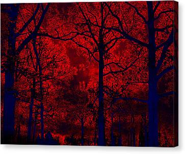 Gothic Red And Blue Surreal Fantasy Trees Canvas Print by Kathy Fornal
