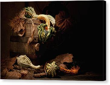 Squash Canvas Print - Gourds And Leaves Still Life by Tom Mc Nemar