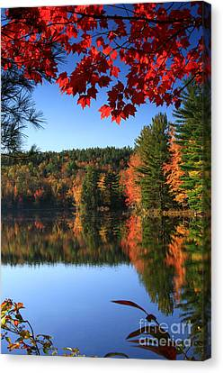 Grafton Pond Canvas Print by Butch Lombardi