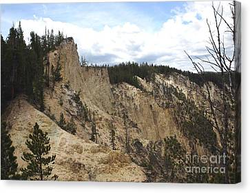 Grand Canyon Cliff In Yellowstone Canvas Print by Living Color Photography Lorraine Lynch