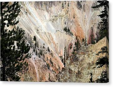 Grand Canyon Colors Of Yellowstone Canvas Print by Living Color Photography Lorraine Lynch