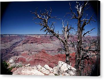 Canvas Print featuring the photograph Grand Canyon Number One by Lon Casler Bixby